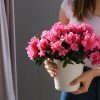 Самые редкие комнатные цветы