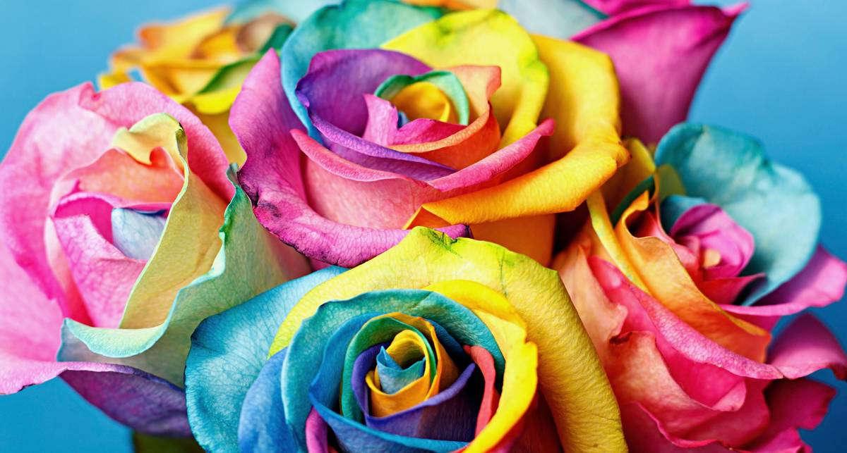 Как изменить цвет цветов
