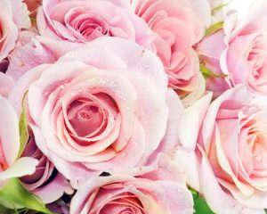 Как правильно выбирать цветочный букет для праздничного мероприятия
