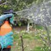 Весеннее опрыскивание сада