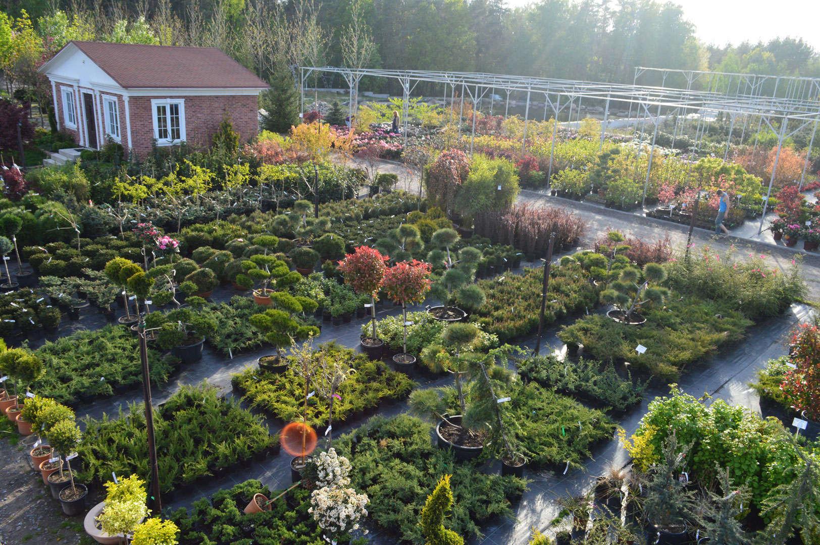 Оборудование для выращивания цветов и растений